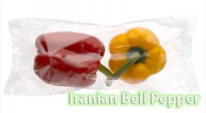 Bell pepper export