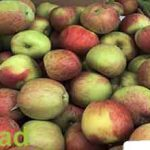 Iran's apple price in Pakistan