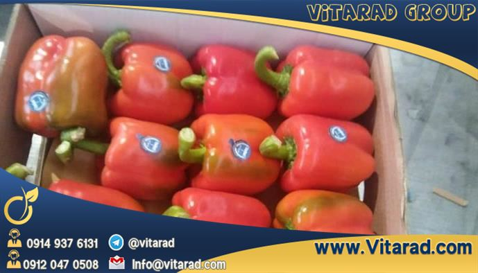 Russian buyers of Persian bell peppers