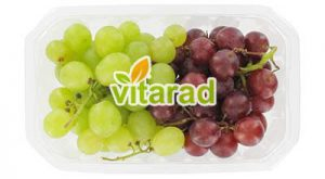 Urmia grape
