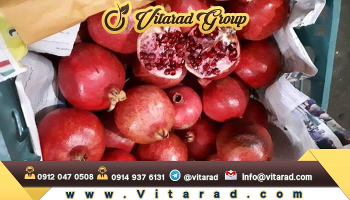 Best Pomegranate in the world