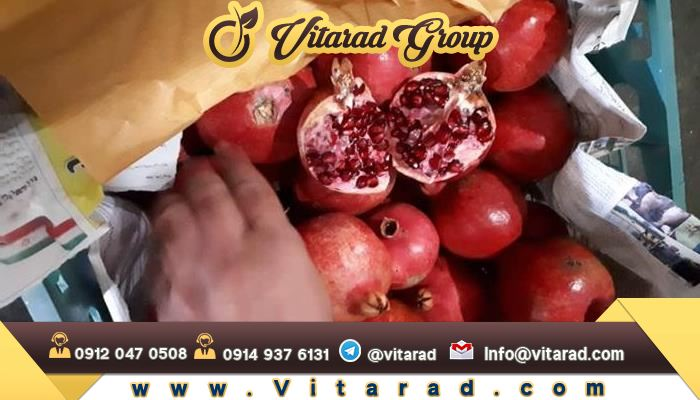 Pomegranate export packing