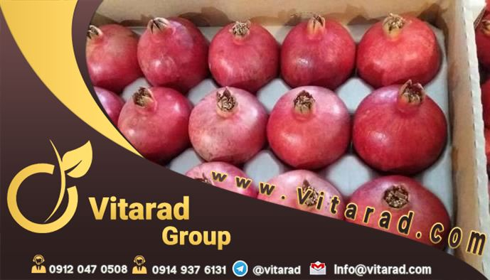 price red anar export from Iran