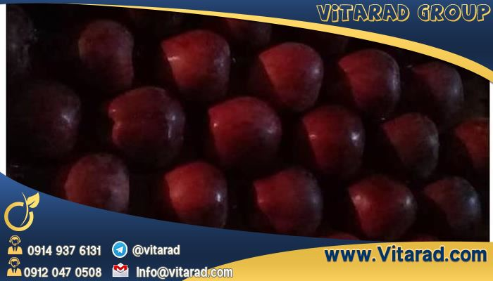 Price per ton of Iranian apples for export