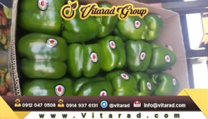 Bell pepper price in Russia