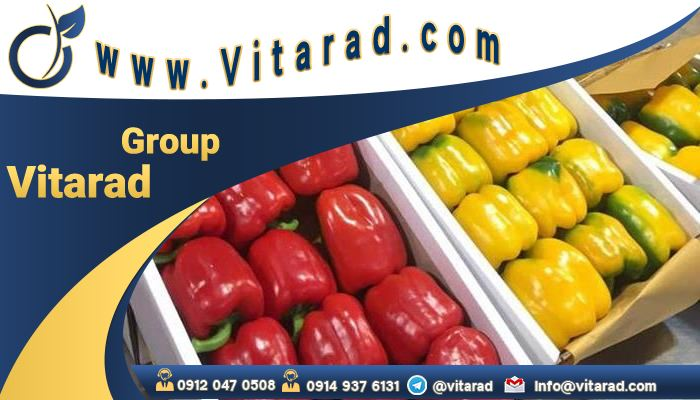 Export of bell peppers from Iran